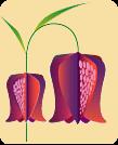 logo OŠ Škofljica